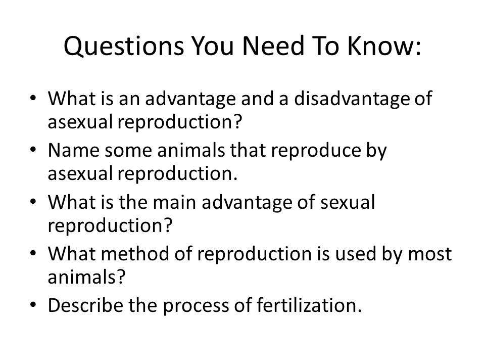 Questions You Need To Know: What is an advantage and a disadvantage of asexual reproduction? Name some animals that reproduce by asexual reproduction.