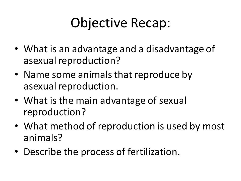 Objective Recap: What is an advantage and a disadvantage of asexual reproduction? Name some animals that reproduce by asexual reproduction. What is th