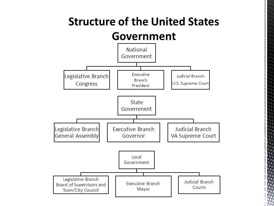National Government Legislative Branch Congress Executive Branch President Judicial Branch U.S. Supreme Court State Government Legislative Branch Gene