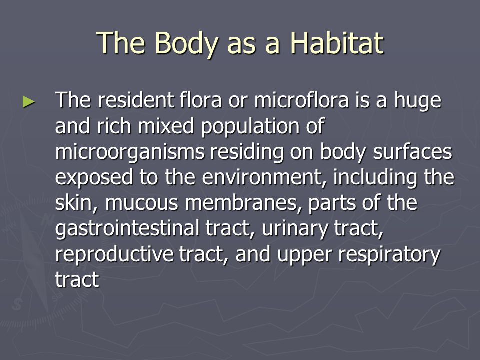 The Body as a Habitat ► Anatomical sites lying within the body cavity (organs) and fluids (blood, urine) in those sites do not harbor flora ► Colonization: begins just prior to birth and continues over an individual's life; variations occur in response to individual differences in age, diet, hygiene, and health