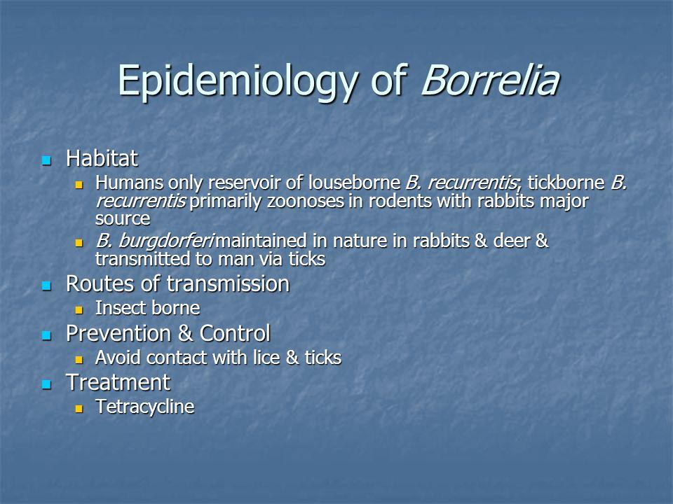 Epidemiology of Borrelia Habitat Habitat Humans only reservoir of louseborne B. recurrentis; tickborne B. recurrentis primarily zoonoses in rodents wi