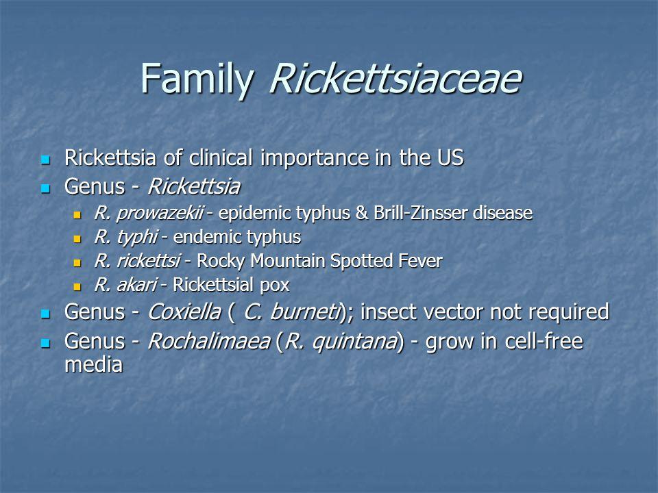 Family Rickettsiaceae Rickettsia of clinical importance in the US Rickettsia of clinical importance in the US Genus - Rickettsia Genus - Rickettsia R.