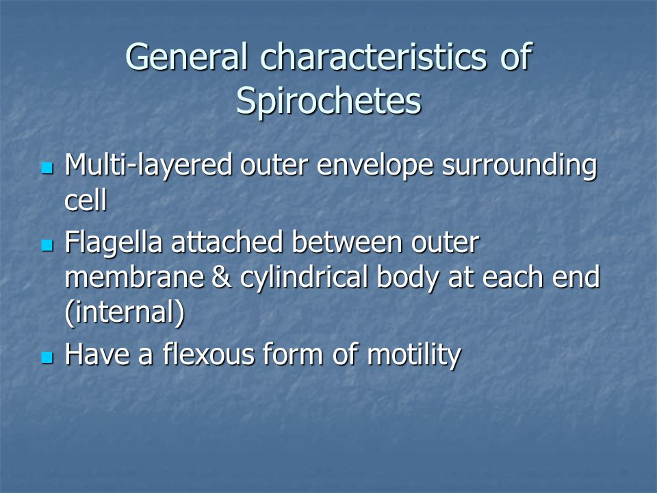 General characteristics of Spirochetes Multi-layered outer envelope surrounding cell Multi-layered outer envelope surrounding cell Flagella attached b