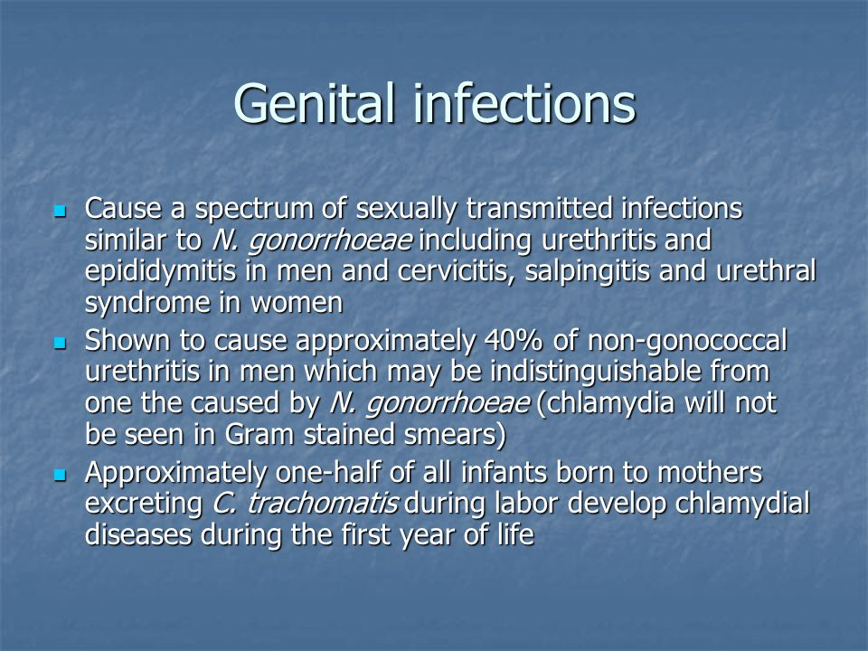Genital infections Cause a spectrum of sexually transmitted infections similar to N. gonorrhoeae including urethritis and epididymitis in men and cerv