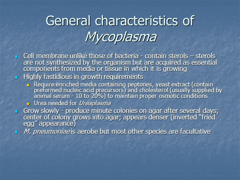 General characteristics of Mycoplasma Cell membrane unlike those of bacteria - contain sterols – sterols are not synthesized by the organism but are a
