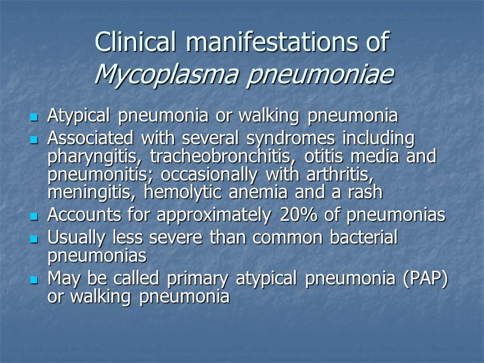 Clinical manifestations of Mycoplasma pneumoniae Atypical pneumonia or walking pneumonia Atypical pneumonia or walking pneumonia Associated with sever