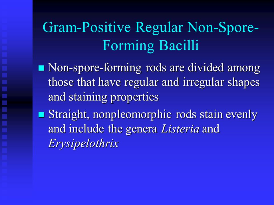 Gram-Positive Regular Non-Spore- Forming Bacilli Non-spore-forming rods are divided among those that have regular and irregular shapes and staining properties Non-spore-forming rods are divided among those that have regular and irregular shapes and staining properties Straight, nonpleomorphic rods stain evenly and include the genera Listeria and Erysipelothrix Straight, nonpleomorphic rods stain evenly and include the genera Listeria and Erysipelothrix