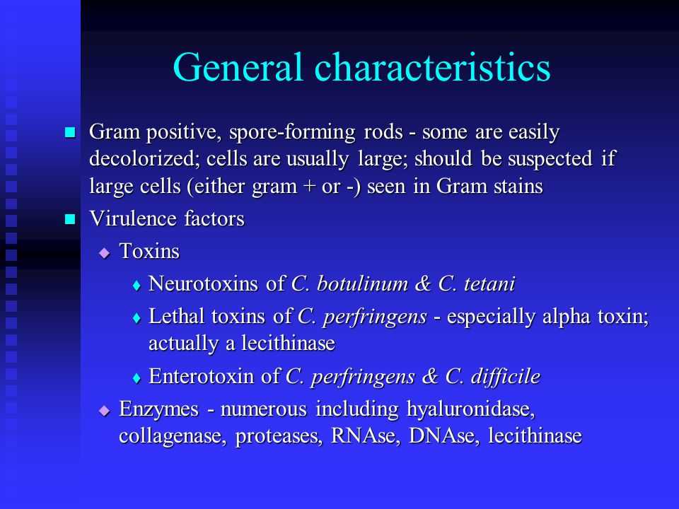 General characteristics Gram positive, spore-forming rods - some are easily decolorized; cells are usually large; should be suspected if large cells (either gram + or -) seen in Gram stains Gram positive, spore-forming rods - some are easily decolorized; cells are usually large; should be suspected if large cells (either gram + or -) seen in Gram stains Virulence factors Virulence factors  Toxins  Neurotoxins of C.