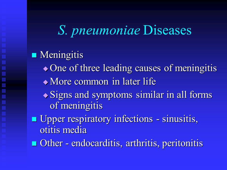 S. pneumoniae Diseases Meningitis Meningitis  One of three leading causes of meningitis  More common in later life  Signs and symptoms similar in a