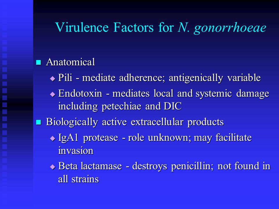 Virulence Factors for N. gonorrhoeae Anatomical Anatomical  Pili - mediate adherence; antigenically variable  Endotoxin - mediates local and systemi