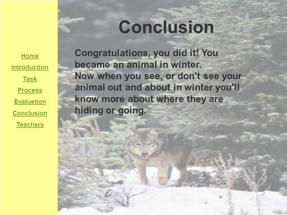 Home Introduction Task Process Evaluation Conclusion Teachers Conclusion Congratulations, you did it! You became an animal in winter. Now when you see