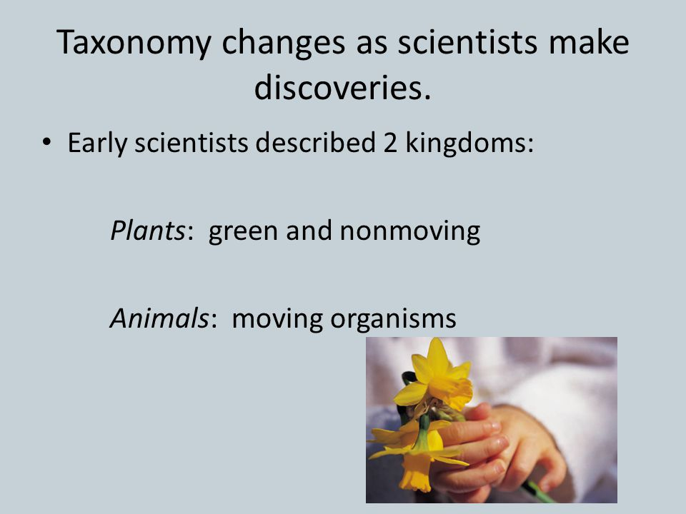Taxonomy changes as scientists make discoveries. Early scientists described 2 kingdoms: Plants: green and nonmoving Animals: moving organisms