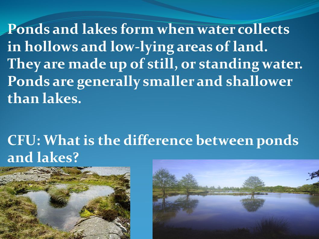 Ponds and lakes form when water collects in hollows and low-lying areas of land. They are made up of still, or standing water. Ponds are generally sma
