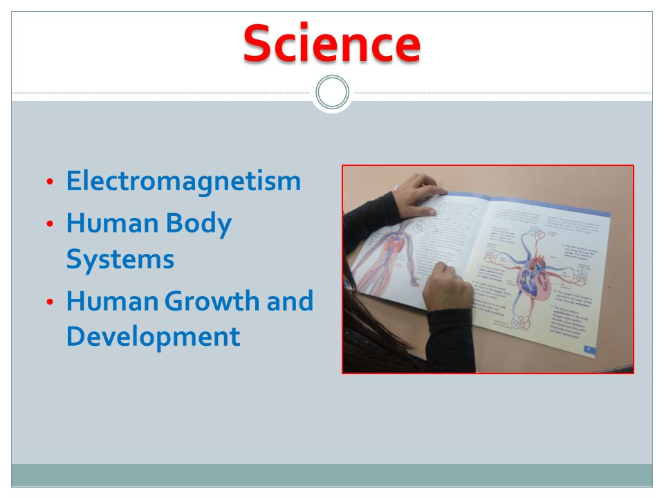 Science Electromagnetism Human Body Systems Human Growth and Development