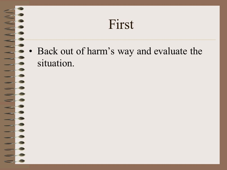 First Back out of harm's way and evaluate the situation.