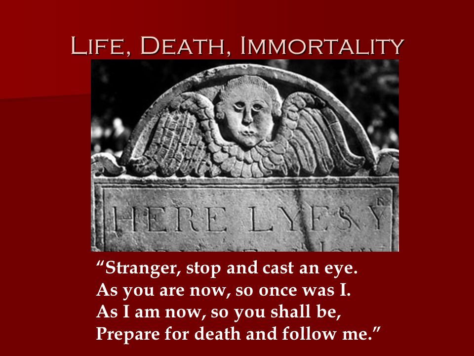 Life, Death, Immortality Stranger, stop and cast an eye.