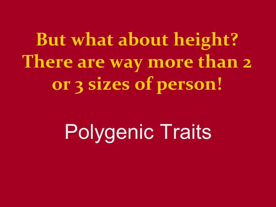But what about height? There are way more than 2 or 3 sizes of person! Polygenic Traits