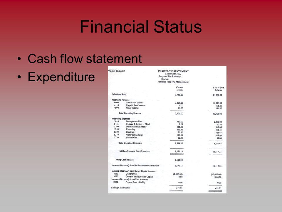 Financial Status Cash flow statement Expenditure