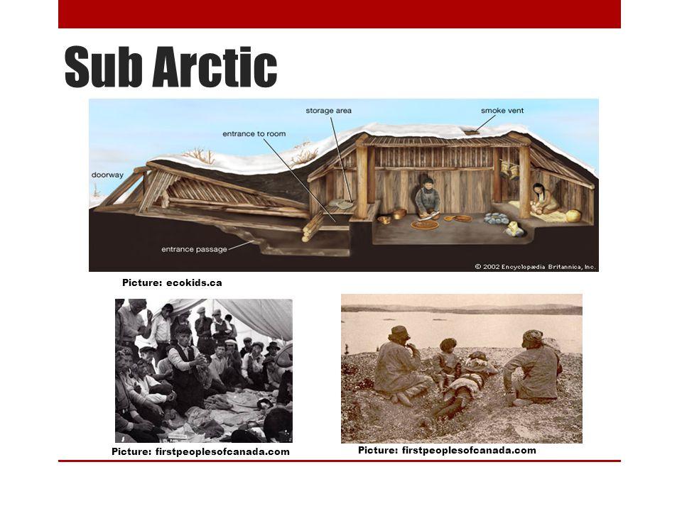 Sub Arctic Picture: ecokids.ca Picture: firstpeoplesofcanada.com