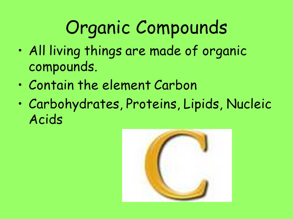 Organic Compounds All living things are made of organic compounds. Contain the element Carbon Carbohydrates, Proteins, Lipids, Nucleic Acids