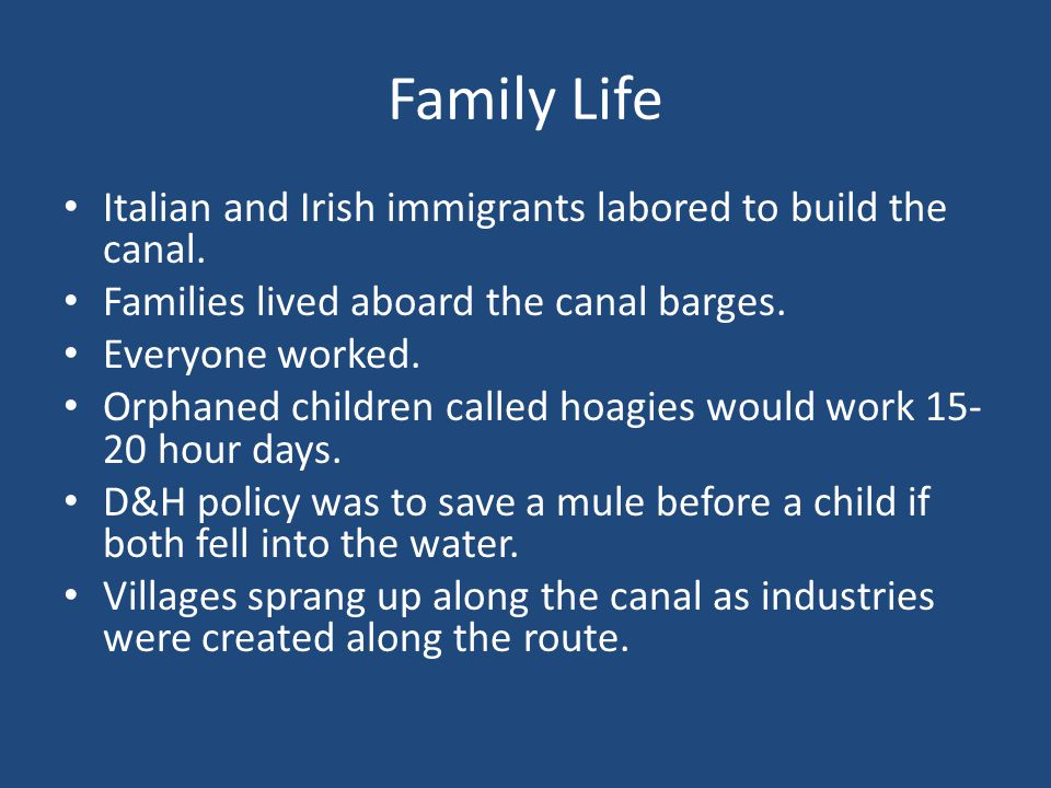 Family Life Italian and Irish immigrants labored to build the canal.