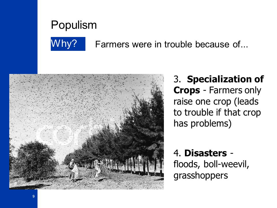 10 Populism Why.5.