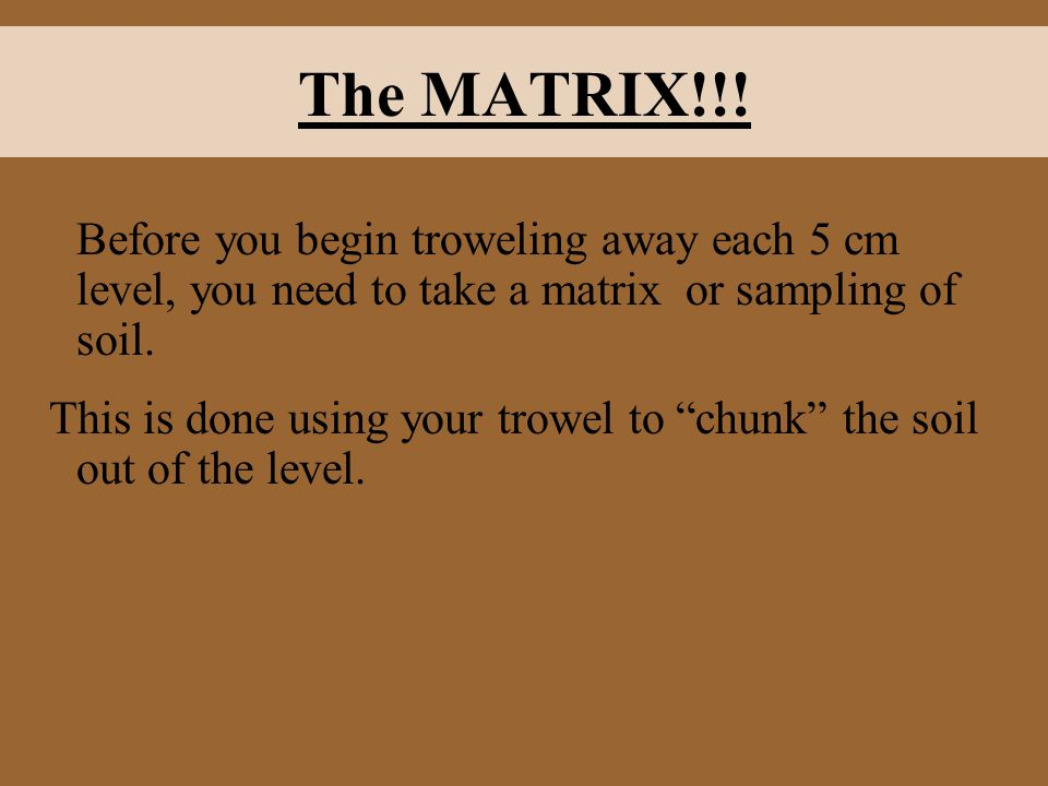 """The MATRIX!!! Before you begin troweling away each 5 cm level, you need to take a matrix or sampling of soil. This is done using your trowel to """"chunk"""