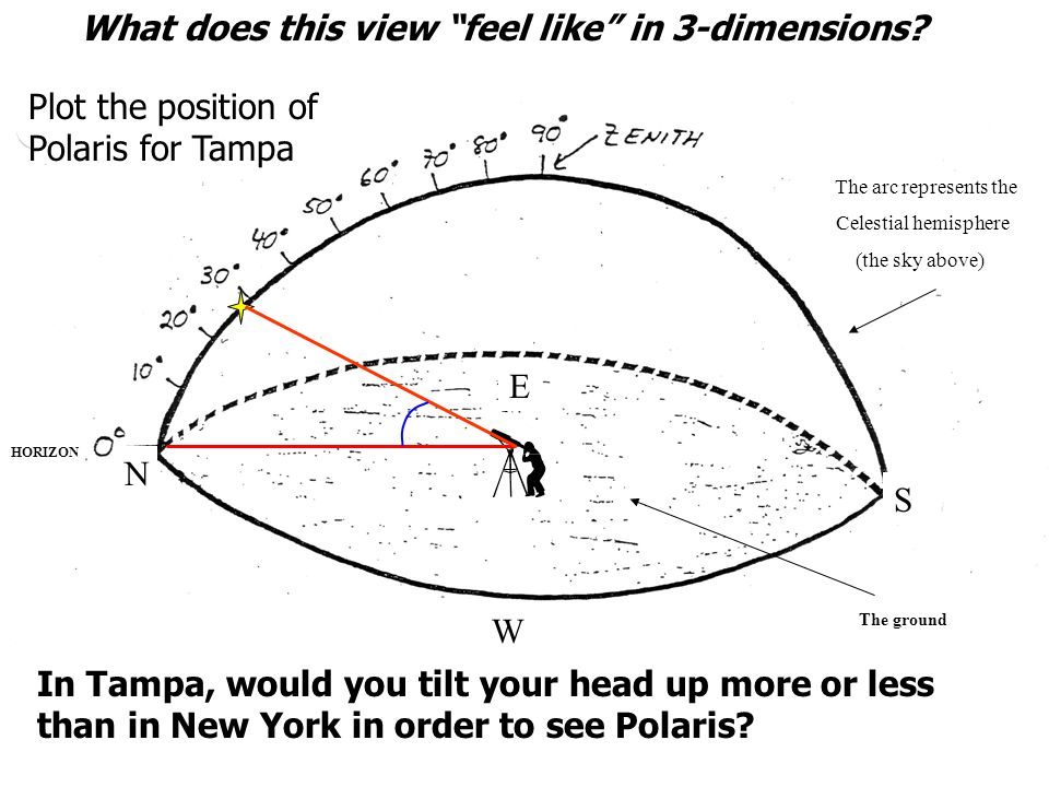 What is the altitude of Polaris in Tampa? Again, let's draw it in 3-D on the celestial sphere diagram!