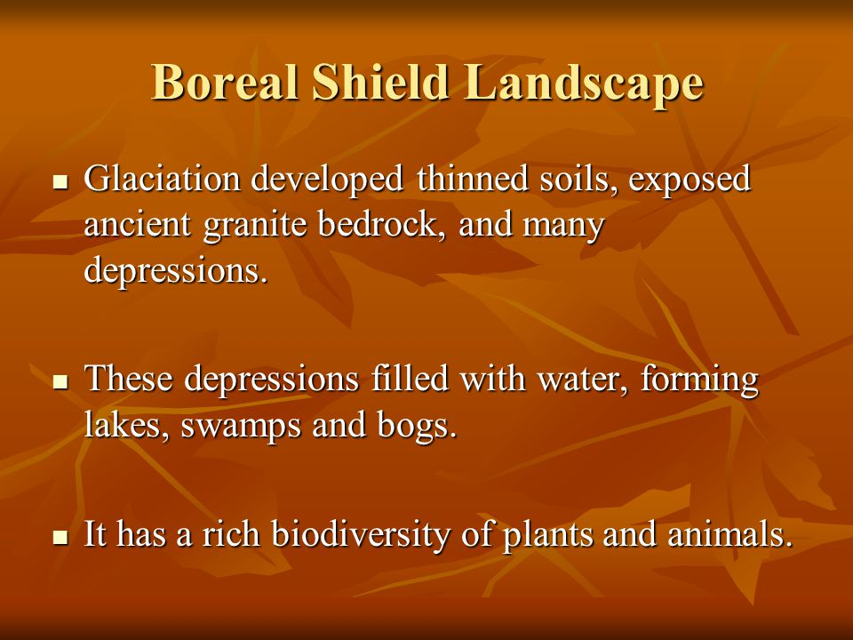 Boreal Shield Landscape Glaciation developed thinned soils, exposed ancient granite bedrock, and many depressions. Glaciation developed thinned soils,