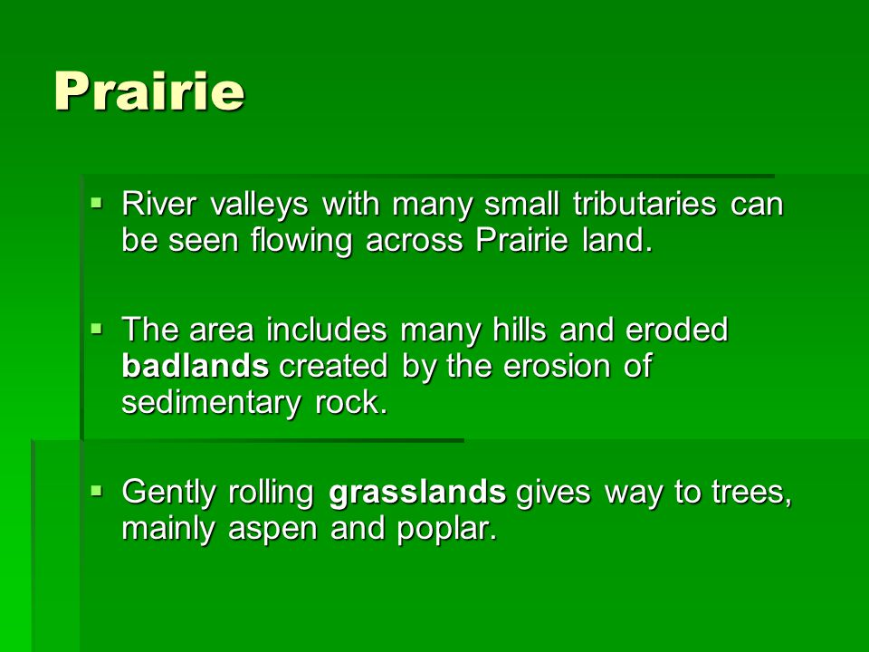 Prairie  River valleys with many small tributaries can be seen flowing across Prairie land.  The area includes many hills and eroded badlands create