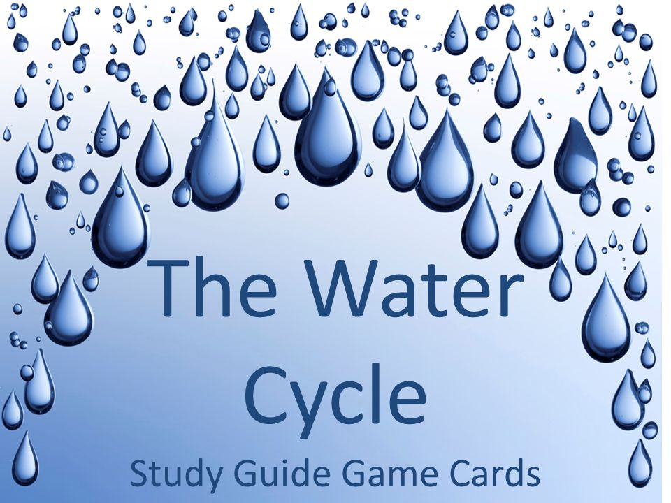 Study Guide Game Cards The Water Cycle