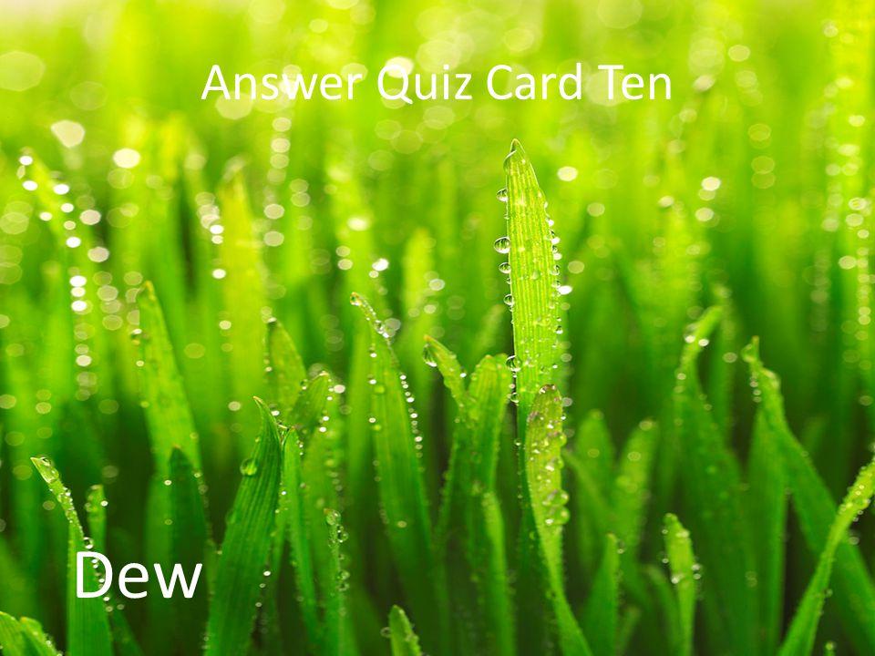 Answer Quiz Card Ten Dew