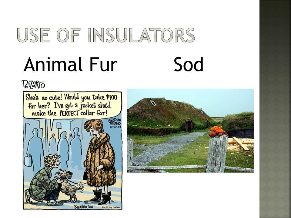 Animal FurSod