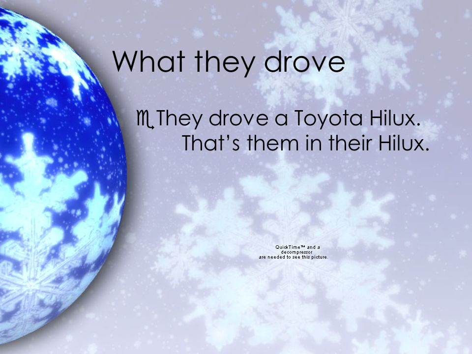 What they saw eThey saw a family of polar bears.eThey drove on the Arctic Ocean.