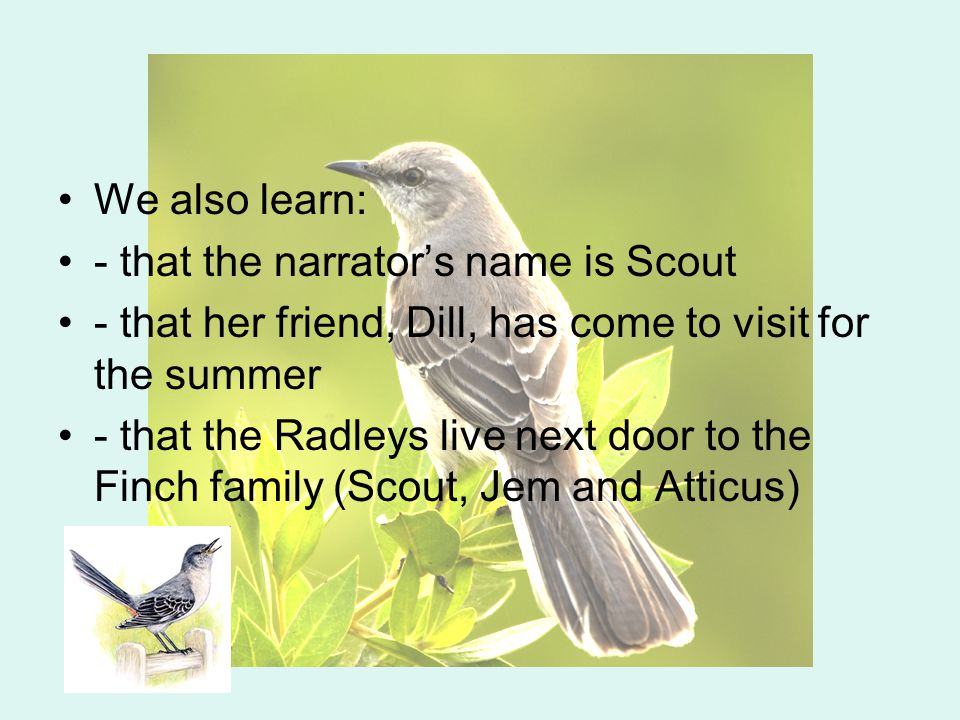 We also learn: - that the narrator's name is Scout - that her friend, Dill, has come to visit for the summer - that the Radleys live next door to the Finch family (Scout, Jem and Atticus)
