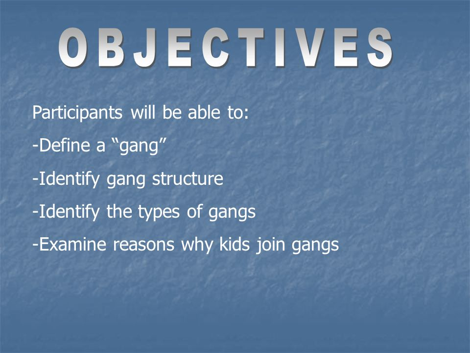 Participants will be able to: -Define a gang -Identify gang structure -Identify the types of gangs -Examine reasons why kids join gangs