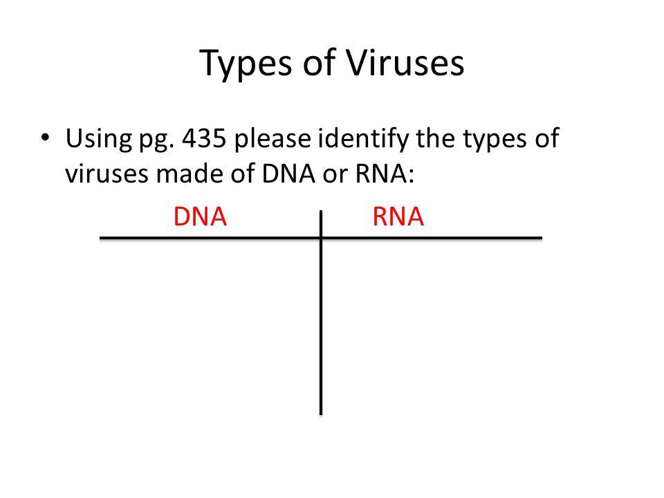 Types of Viruses Using pg. 435 please identify the types of viruses made of DNA or RNA: DNARNA