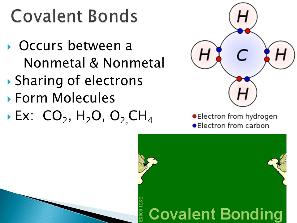  Occurs between a Nonmetal & Nonmetal  Sharing of electrons  Form Molecules  Ex: CO 2, H 2 O, O 2, CH 4