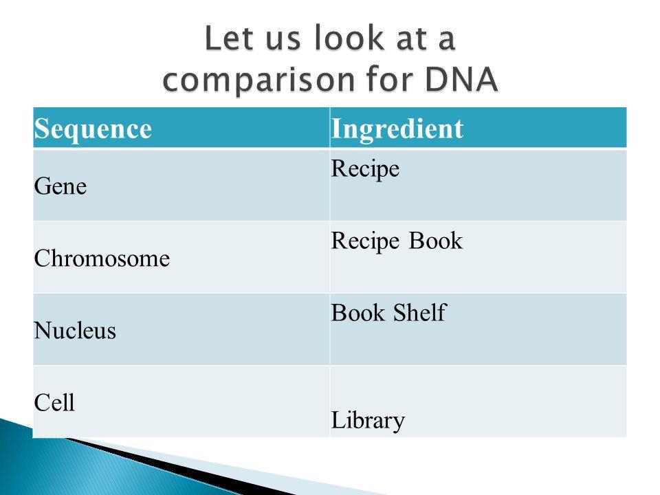 SequenceIngredient Gene Recipe Chromosome Recipe Book Nucleus Book Shelf Cell Library