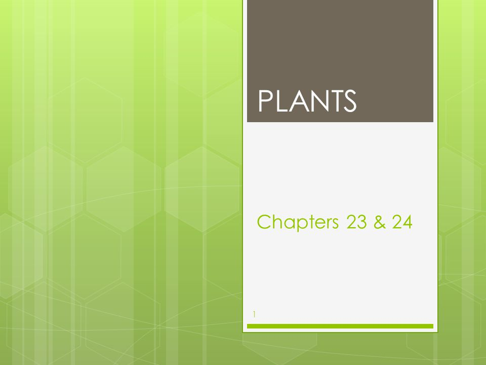 Chapters 23 & 24 PLANTS 1