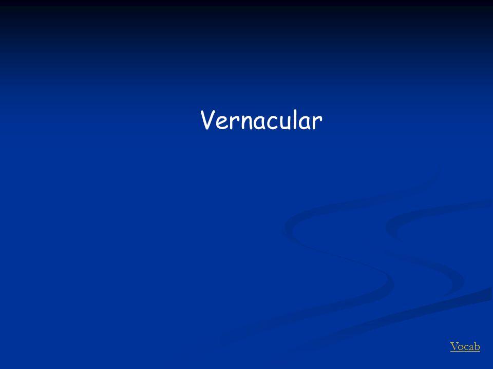 Vocab Vernacular