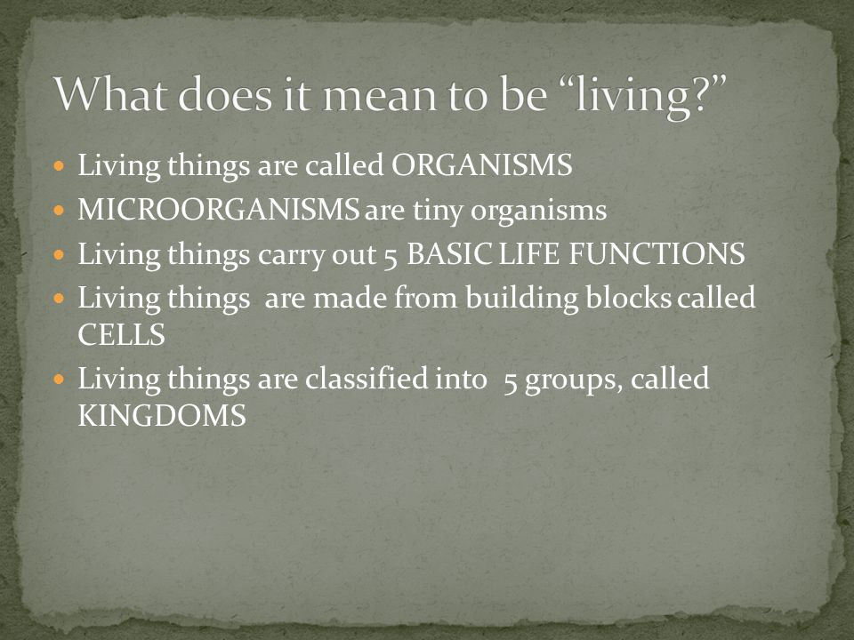 The Study of Living Things Slideshow by Ms. Dickert