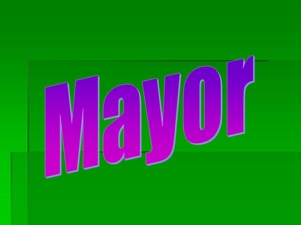 Mayor  Head of executive branch in each city  New Hanover County's Mayor = Bill Saffo