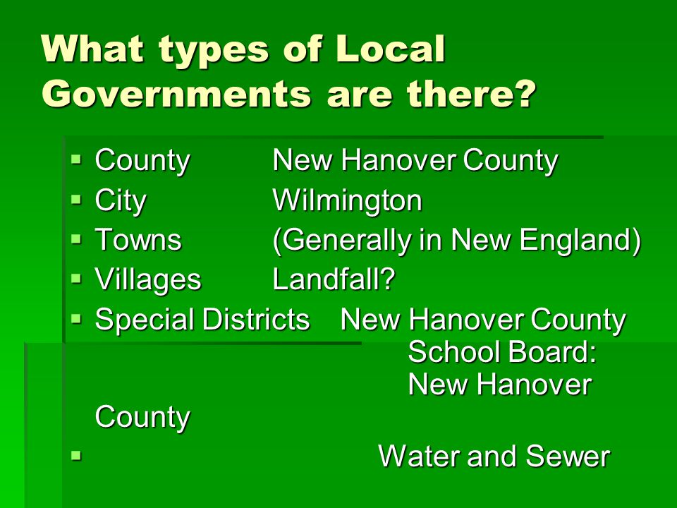 What types of Local Governments are there.