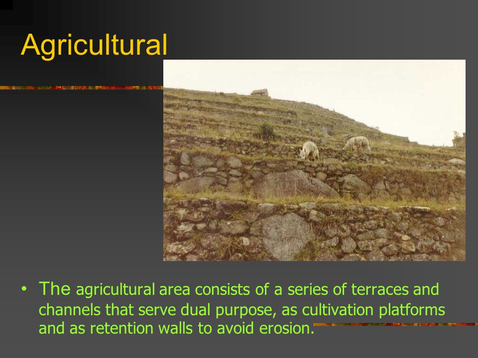 Agricultural The agricultural area consists of a series of terraces and channels that serve dual purpose, as cultivation platforms and as retention walls to avoid erosion.