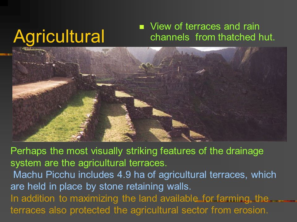 Agricultural View of terraces and rain channels from thatched hut.