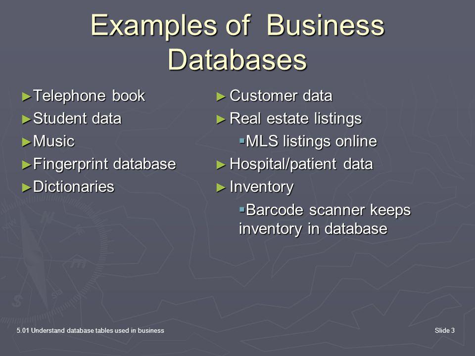 5.01 Understand database tables used in businessSlide 3 Examples of Business Databases ► Telephone book ► Student data ► Music ► Fingerprint database