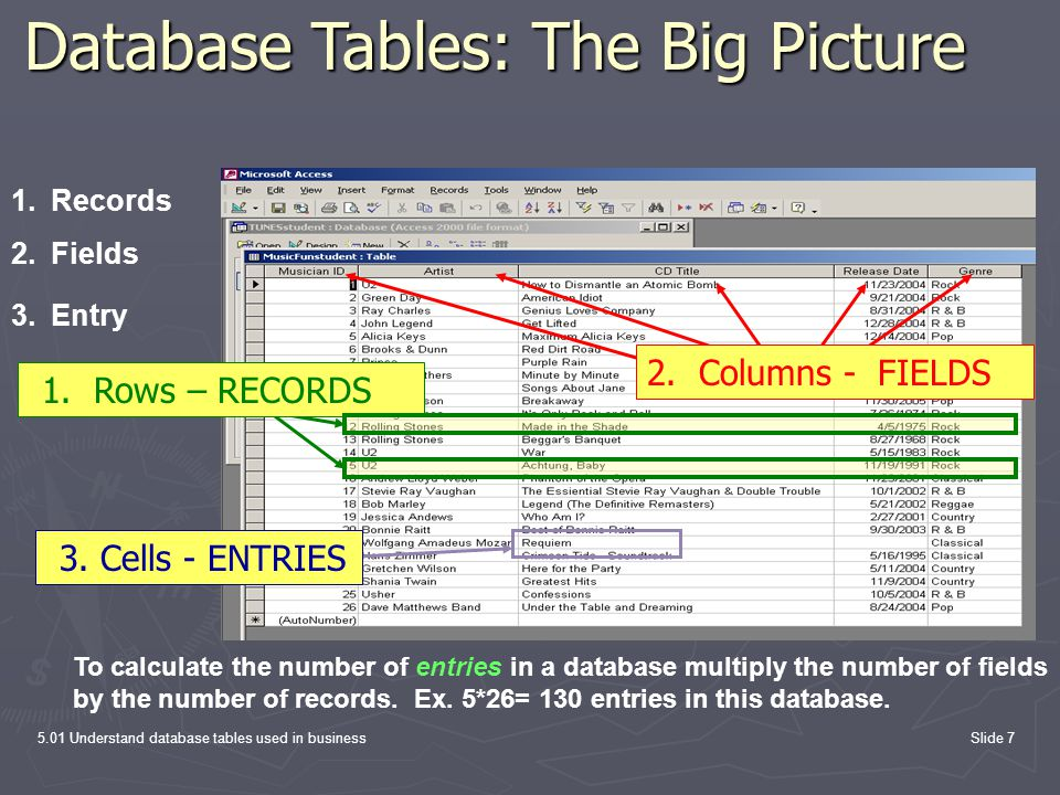 5.01 Understand database tables used in businessSlide 7 Database Tables: The Big Picture To calculate the number of entries in a database multiply the