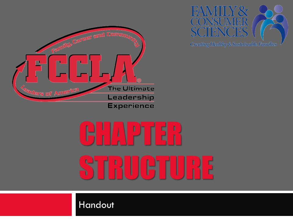 CHAPTER STRUCTURE Handout