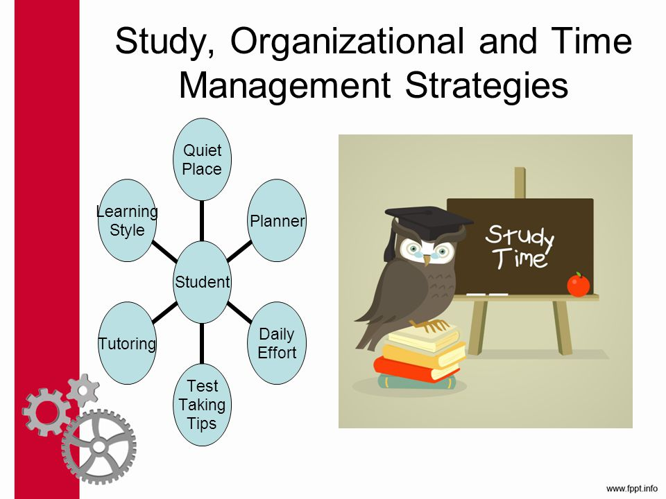 Study, Organizational and Time Management Strategies Student Quiet Place Planner Daily Effort Test Taking Tips Tutoring Learning Style